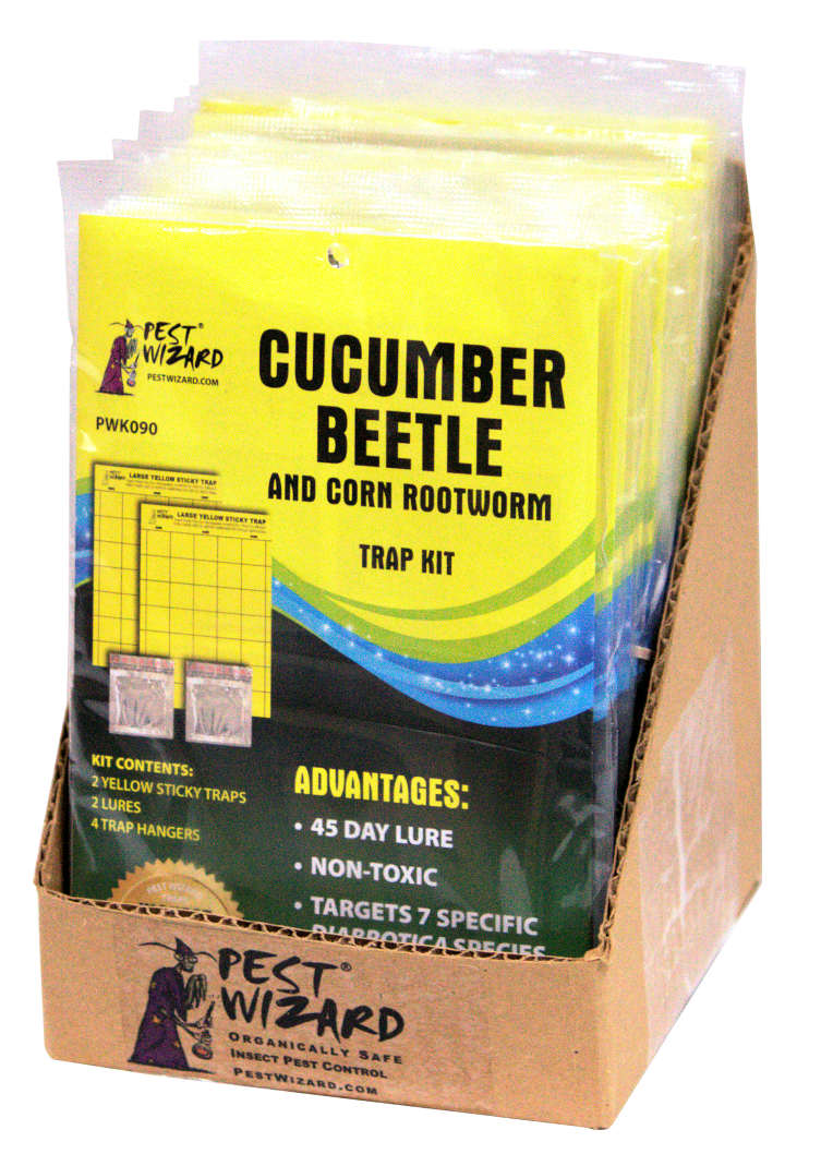 case of Cucumber Beetle Kits